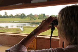 Birdwatching at Upton Warren by Wendy Carter