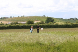 People exploring Hardwick Green Meadows by Wendy Carter