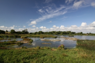 The Moors pools at Upton Warren by Wendy Carter
