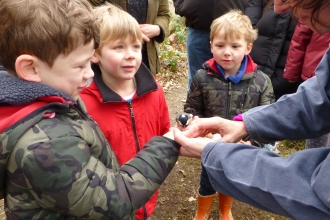 Children at Wyre Forest Watch looking at a great tit