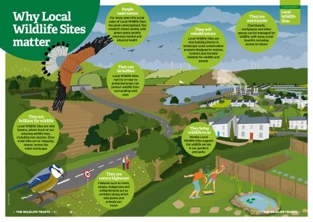 Why Local Wildlife Sites Matter