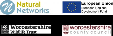 Natural Networks Logos