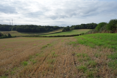 Arable fields at Dropping Well Farm by Wendy Carter