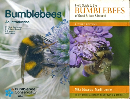 Covers of two books about bumblebees By Harry Green