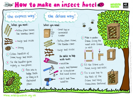 Instructions for making an insect hotel