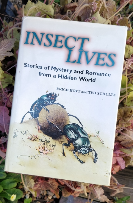 Cover of 'Insect Lives' book