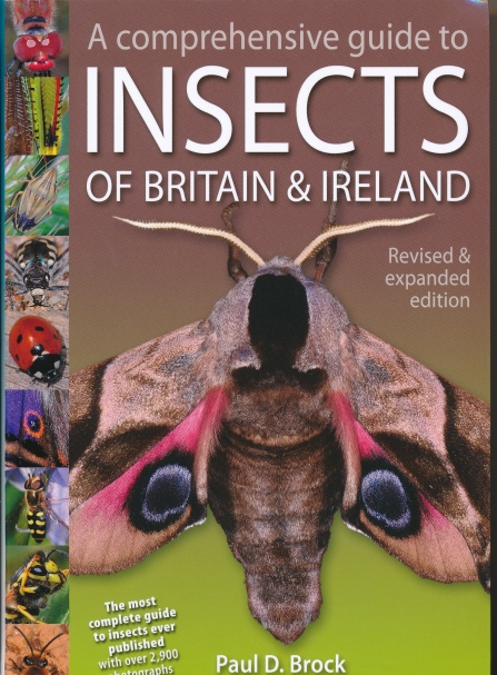 "Front cover of ""A comprehensive guide to Insects of Britain and Ireland"" by Paul D Brock"