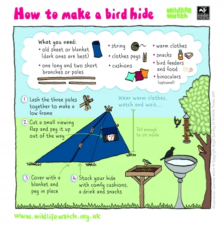 Instructions for making a bird hide