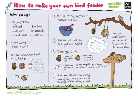 Instructions for making a bird feeder