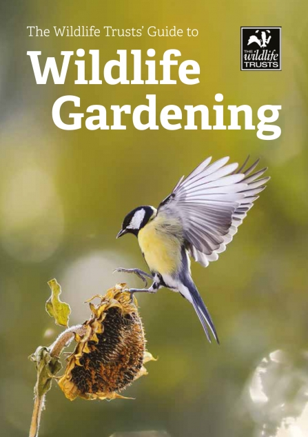 Front cover of Guide to Wildlife Gardening - a great tit landing on a teasel head