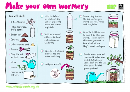 Instructions for making a wormery