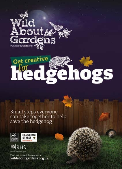 Front cover of booklet to help hedgehogs from Wild About Gardens