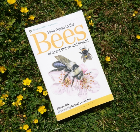 Field Guide to the Bees of Great Britain and Ireland by Steven Falk