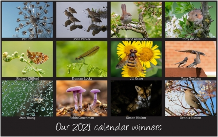 12 winning photos to feature in our 2021 calendar