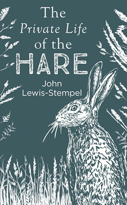 Front cover of The Private Life of the Hare