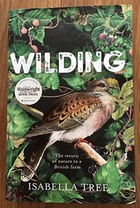 Front cover of Wilding by Isabella Tree