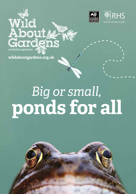 Front cover of 'Big or small, ponds for all' booklet